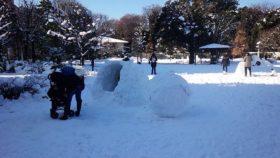 4年ぶりの大雪。