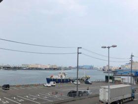 今日は仕事で静岡県に来ています。