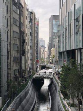 東京に初めて引っ越したころ、渋谷の交差点のあたりの人混みにびっくりしたものです。