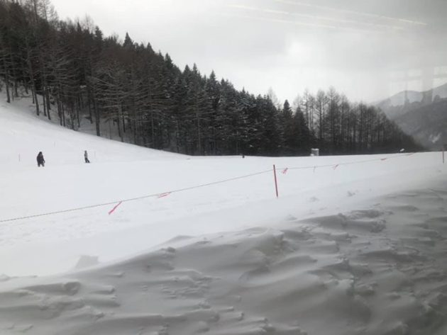 今年初スキー。